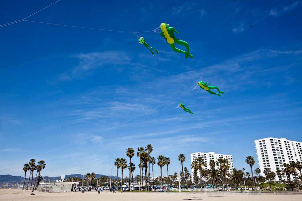 Venice: skydiving frogs