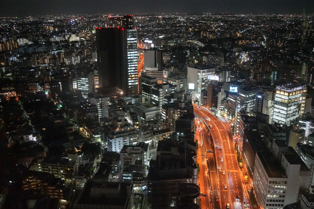 Tokyo: view from